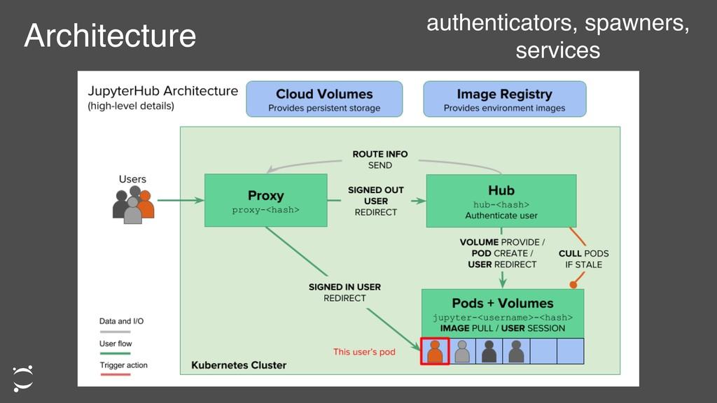 Architecture authenticators, spawners, services