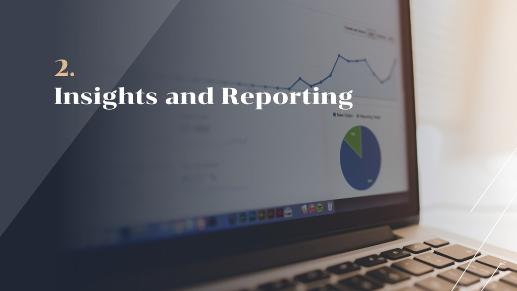 2. Insights and Reporting