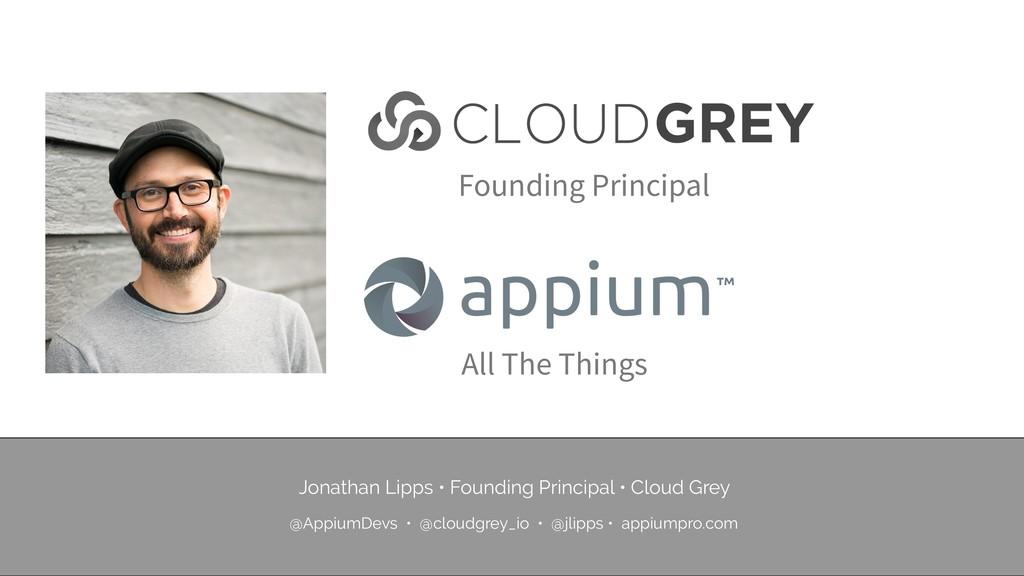Founding Principal All The Things Jonathan Lipp...