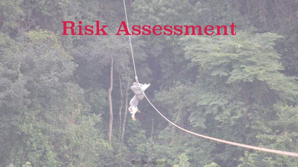 @rmillerwebster Risk Assessment