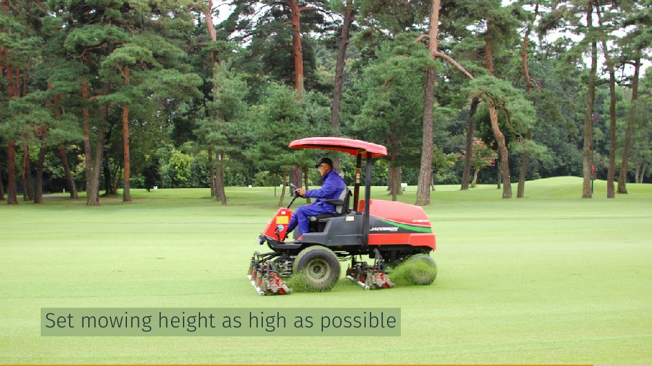 Set mowing height as high as possible