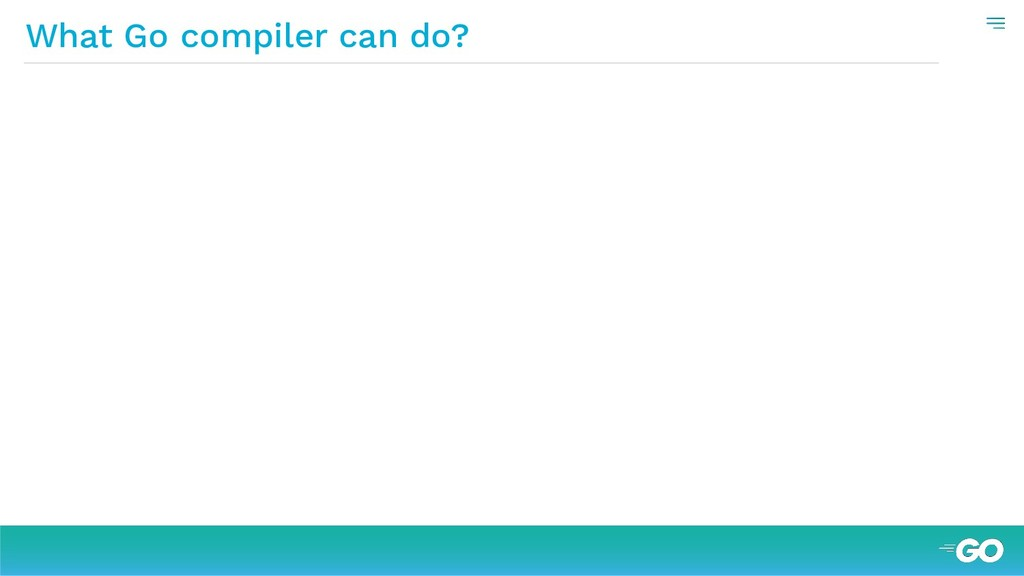 What Go compiler can do?