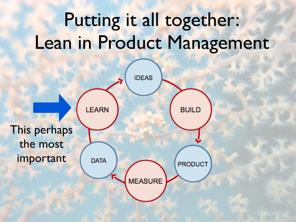 Putting it all together: Lean in Product Manage...