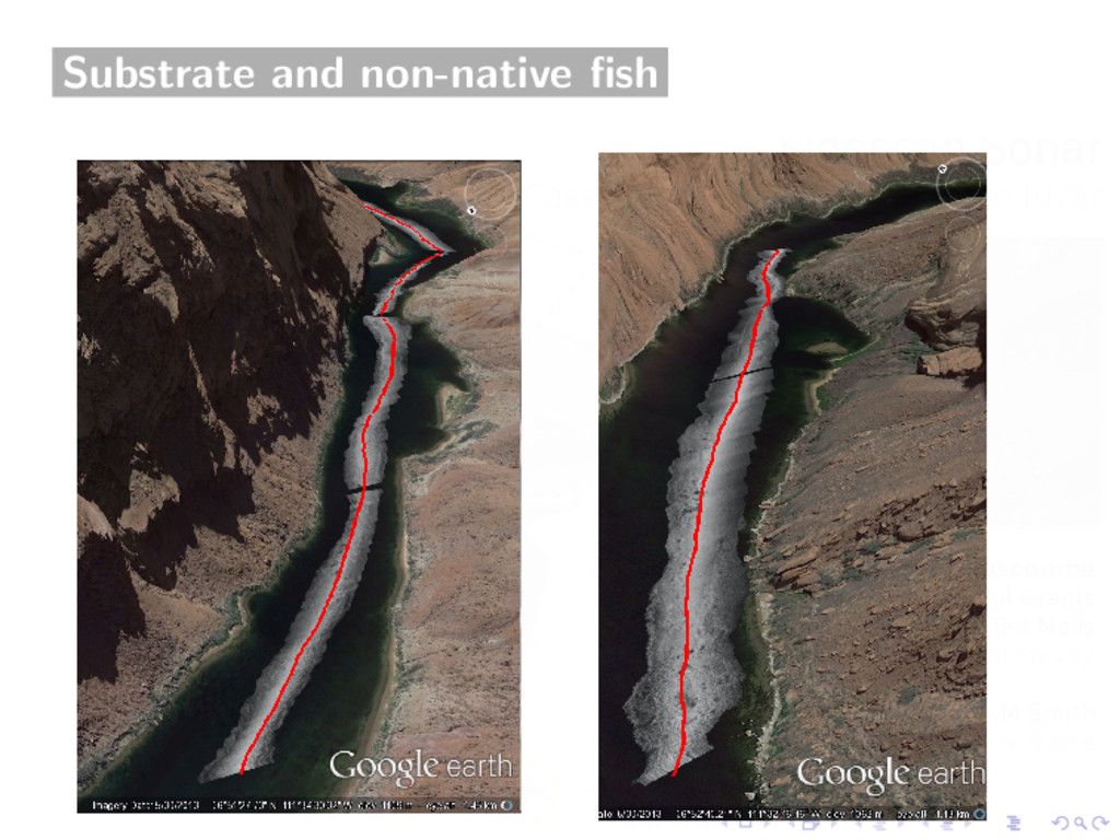 Substrate and non-native fish