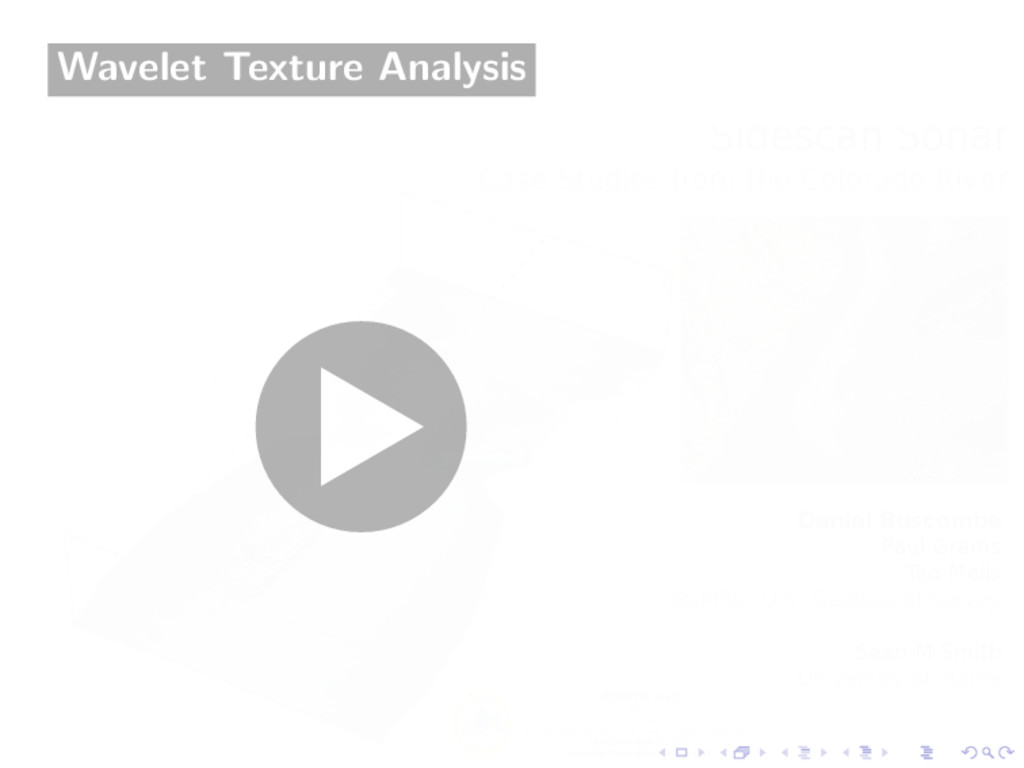 Wavelet Texture Analysis