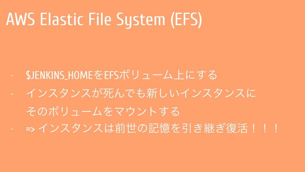 AWS Elastic File System (EFS) - $JENKINS_HOMEΛE...