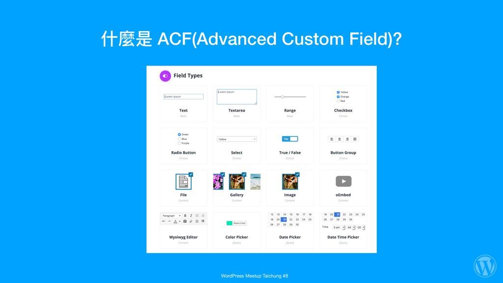 什什麼是 ACF(Advanced Custom Field)? WordPress Meet...