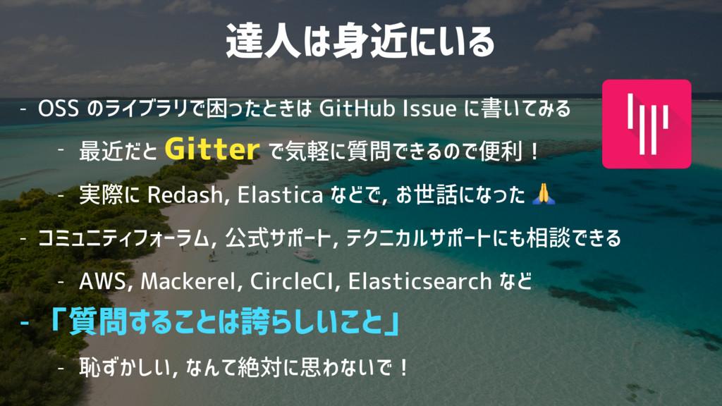 達人は身近にいる - OSS のライブラリで困ったときは GitHub Issue に書いてみ...