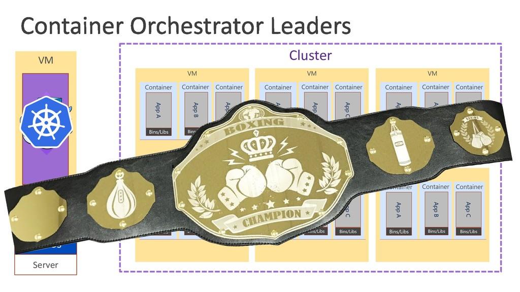 VM Server Host OS Hypervisor Guest OS Cluster