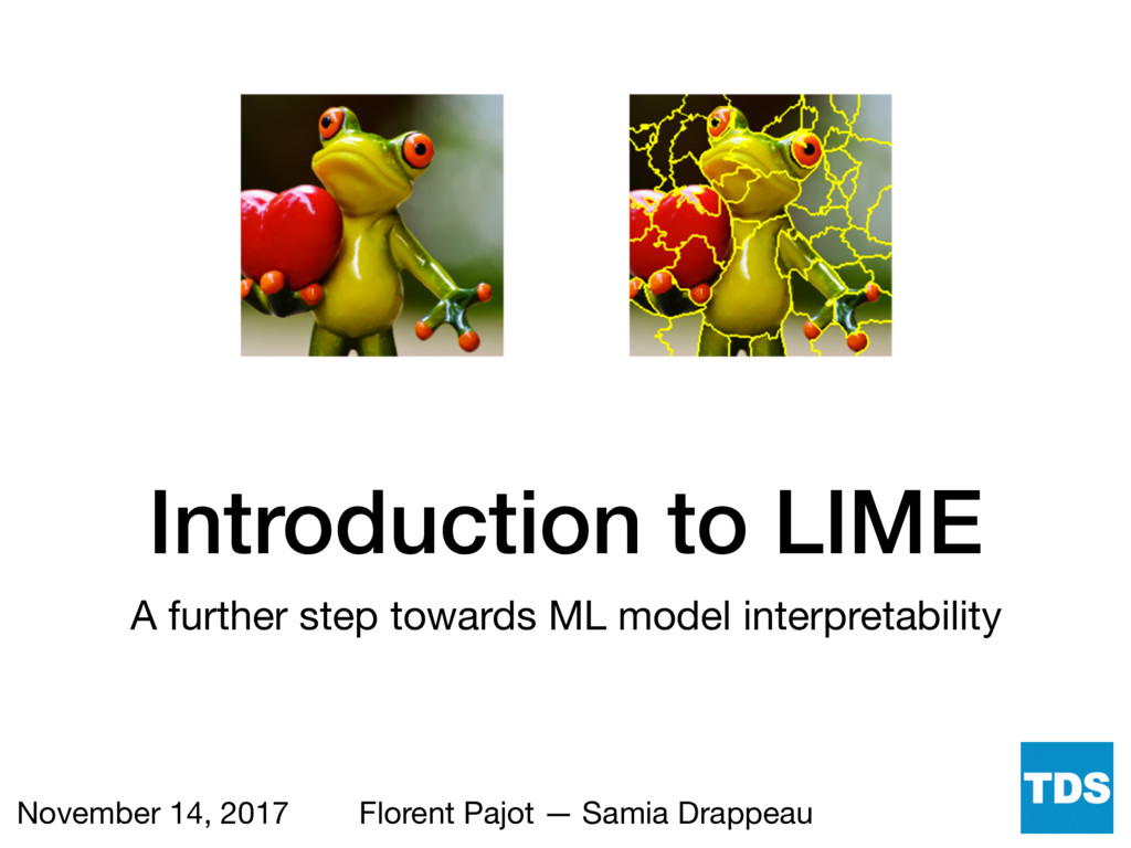Introduction to LIME A further step towards ML ...