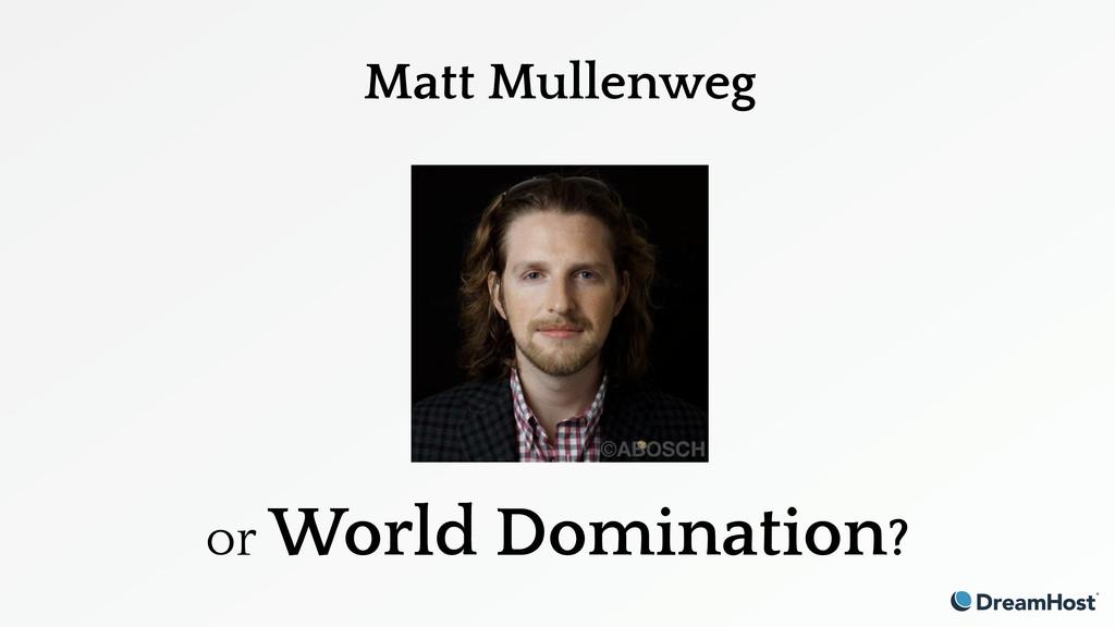 Matt Mullenweg or World Domination?