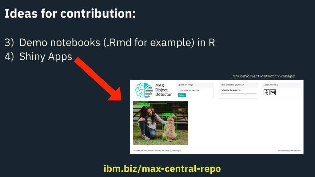 Ideas for contribution: 3) Demo notebooks (.Rmd...