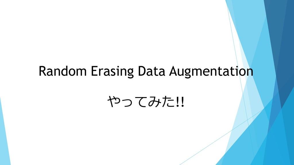 Random Erasing Data Augmentation やってみた!!