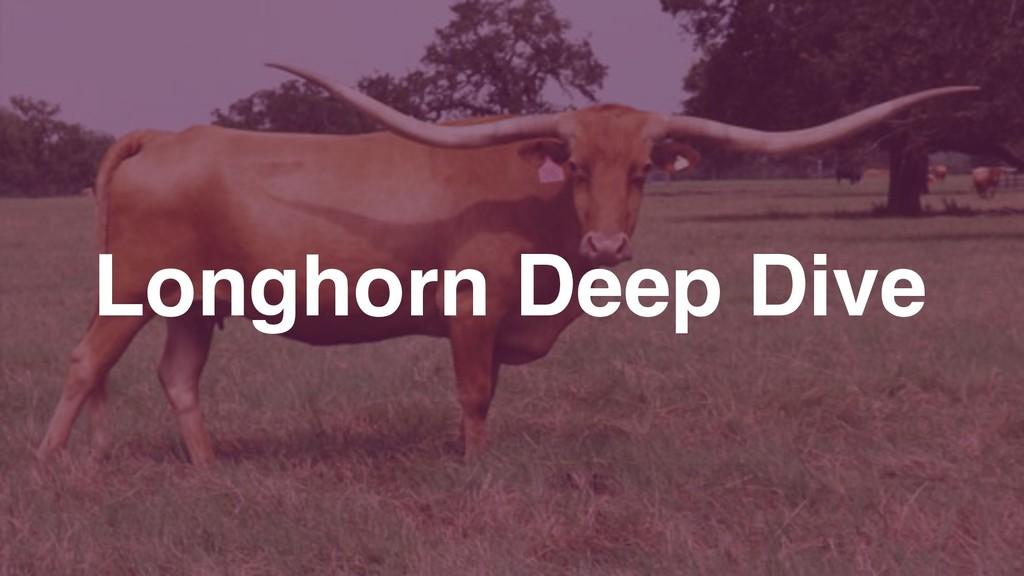 Longhorn Deep Dive