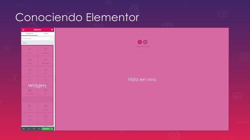 Conociendo Elementor Widgets Vista en vivo