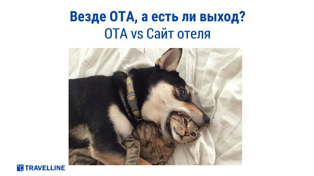 Везде ОТА, а есть ли выход? OTA vs Сайт отеля