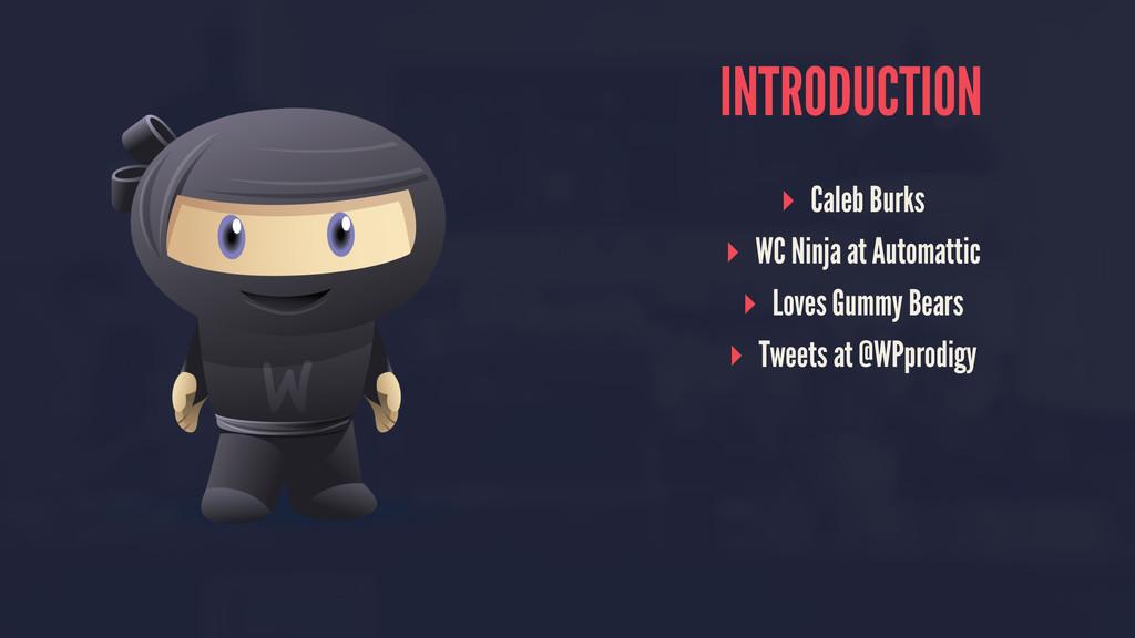 INTRODUCTION ▸ Caleb Burks ▸ WC Ninja at Automa...
