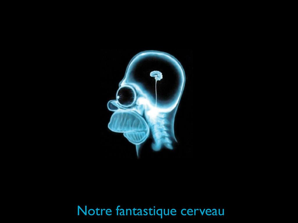 Notre fantastique cerveau