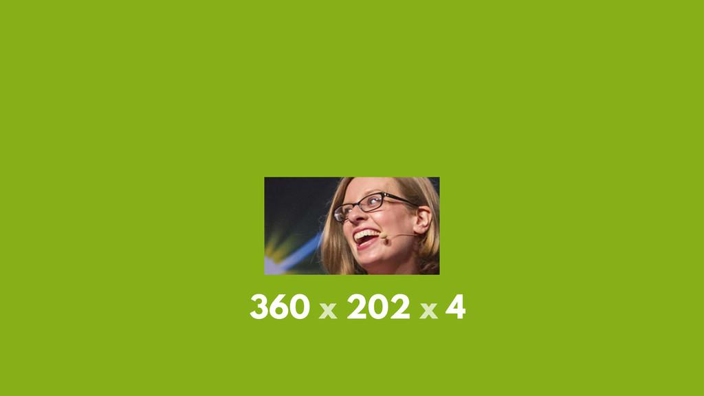 360 x 202 x 4