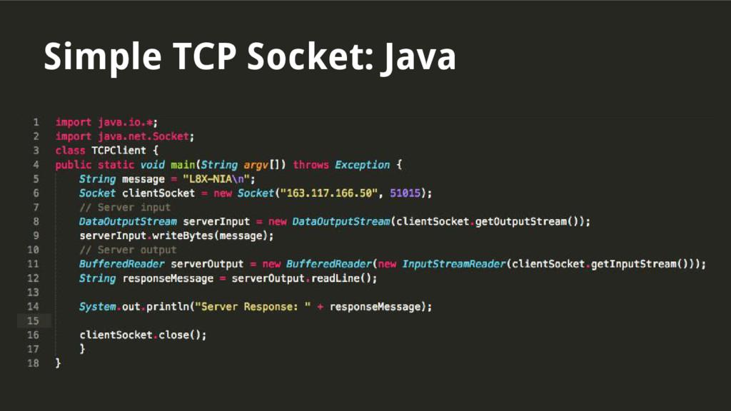 Simple TCP Socket: Java