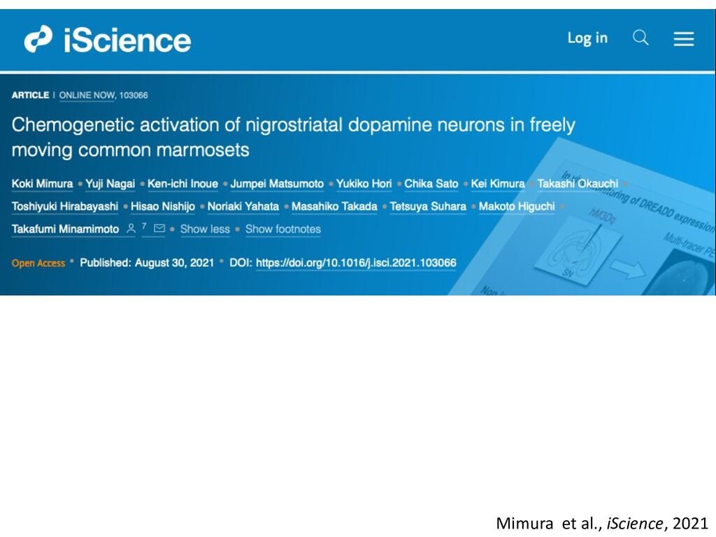 Mimura et al., iScience, 2021