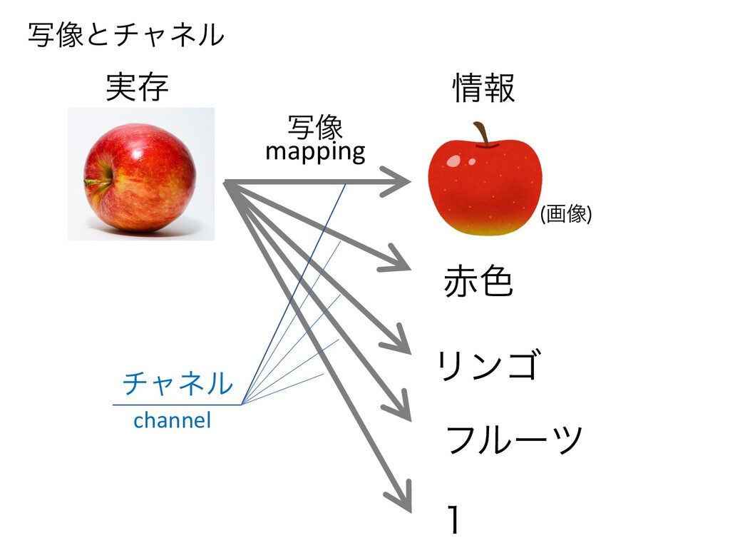 Ϧϯΰ ࣸ૾ ϑϧʔπ ৭  ը૾  ࣮ଘ ใ νϟωϧ mapping channel...