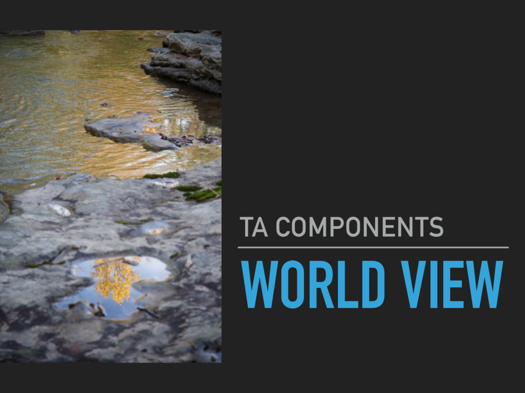 WORLD VIEW TA COMPONENTS