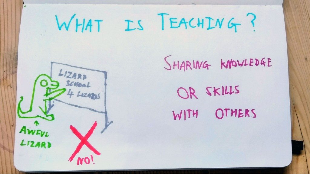 What is teaching? Lizard school 4 lizards? NO T...