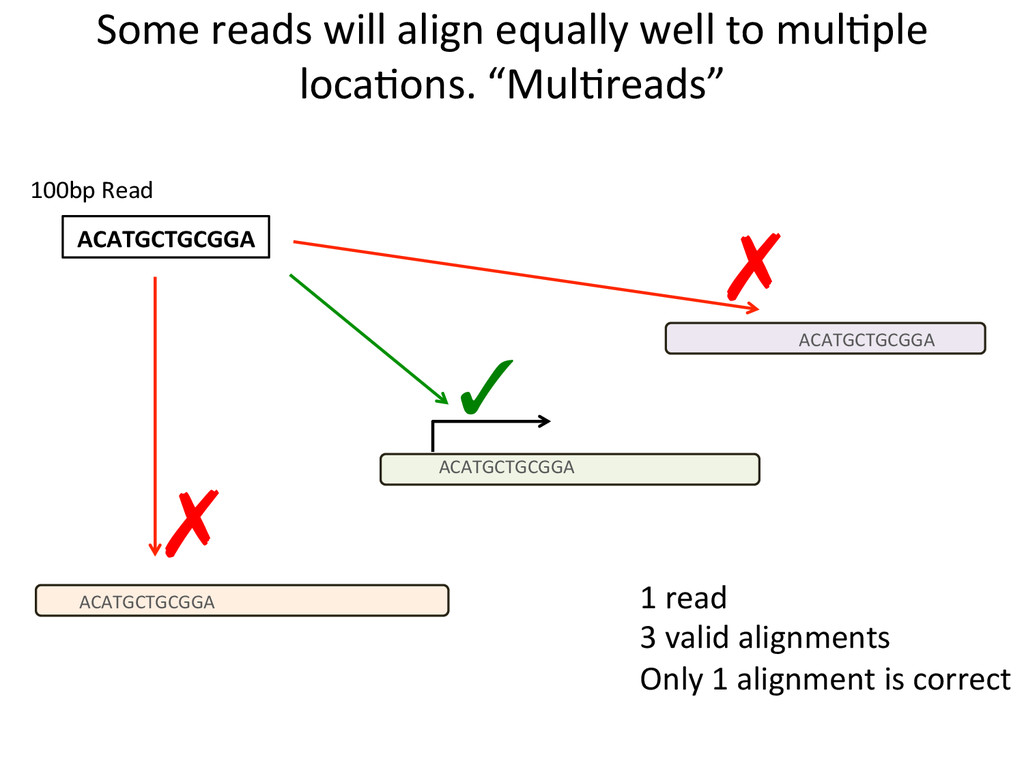 Some reads will align equally we...