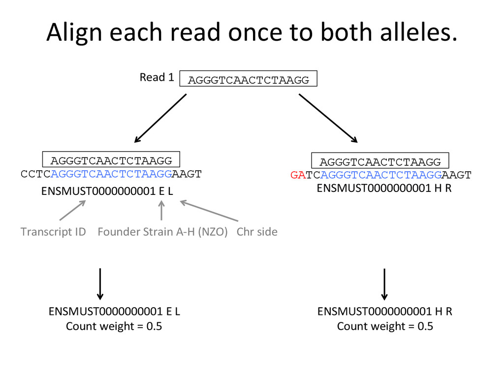 Align each read once to both ...