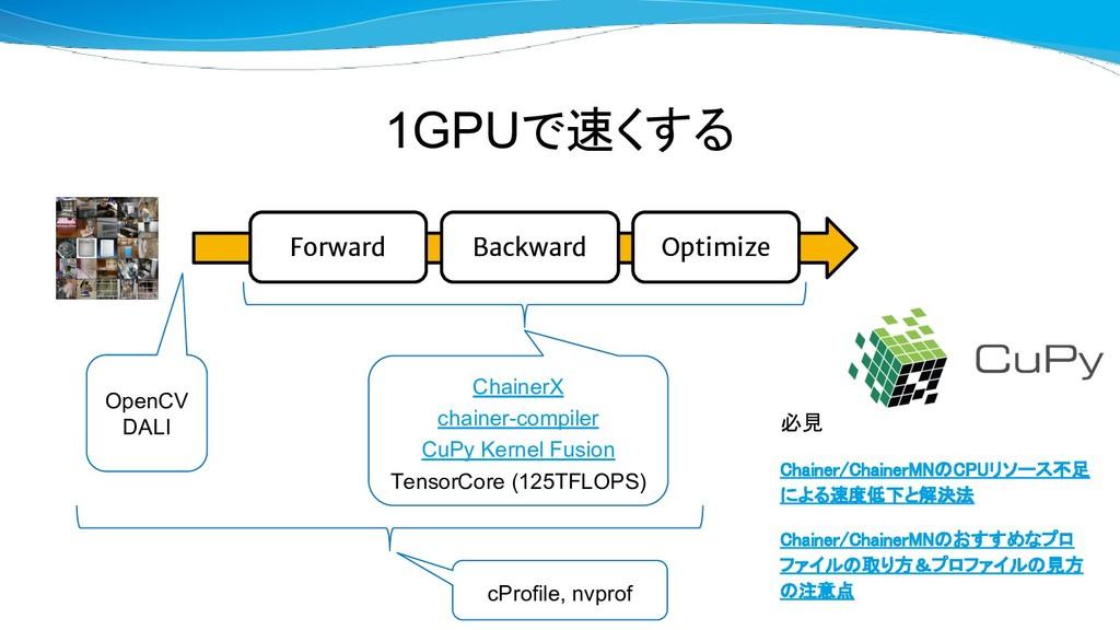 1GPUで速くする Forward Backward Optimize OpenCV DALI...