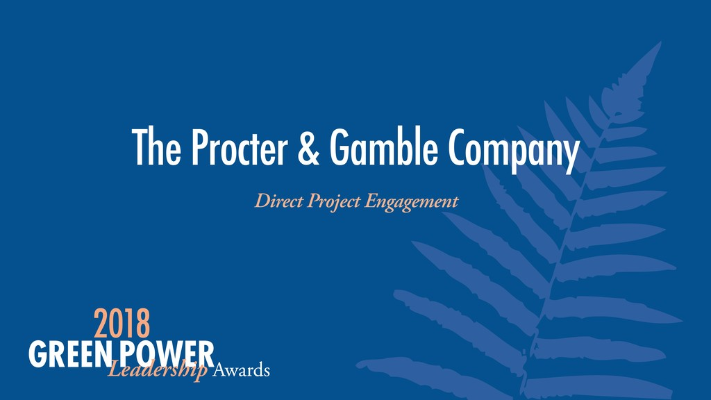 The Procter & Gamble Company Direct Project Eng...