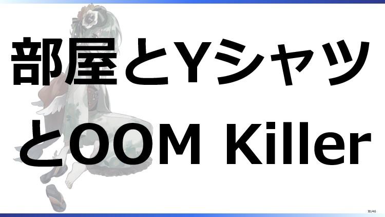 部屋とYシャツ とOOM Killer 30/46