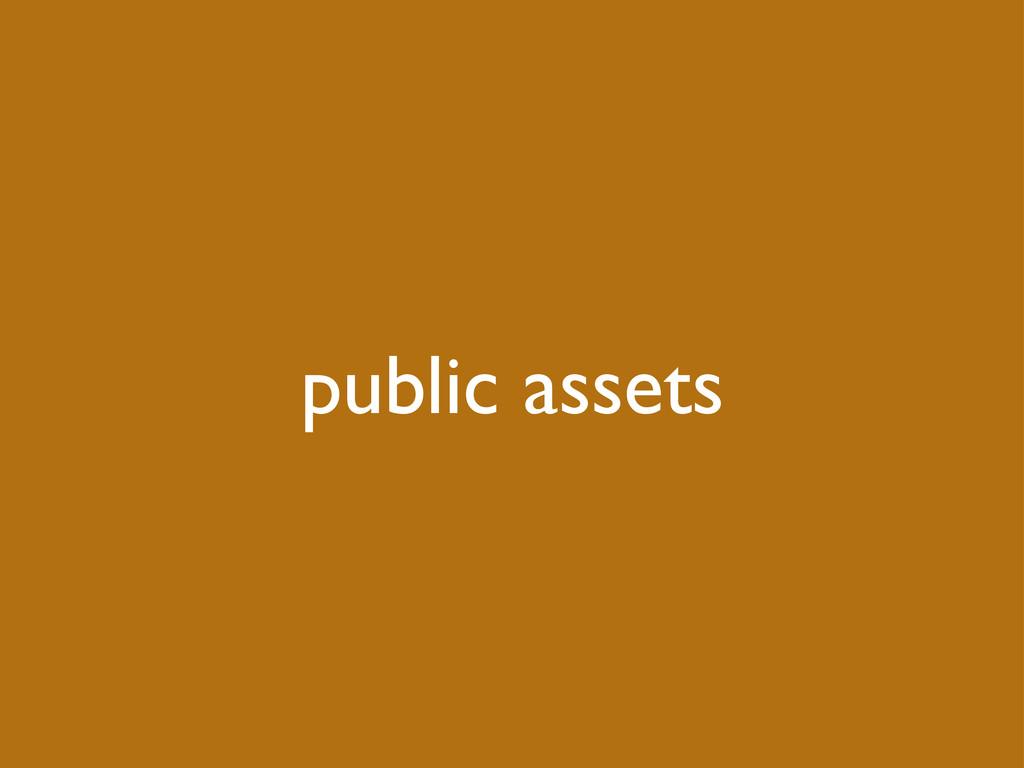 public assets