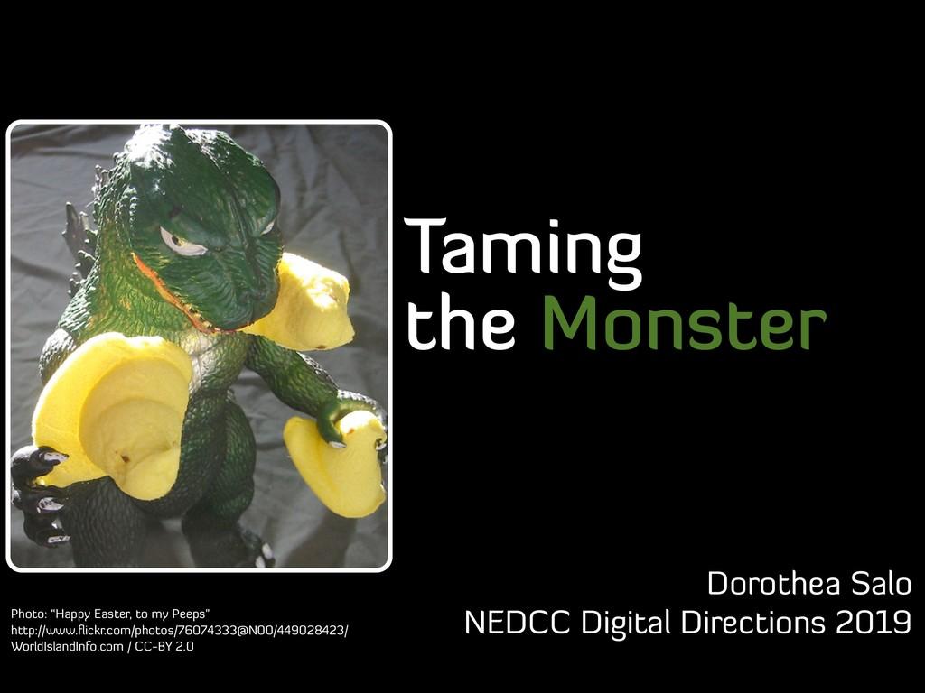 Taming the Monster Dorothea Salo NEDCC Digital ...
