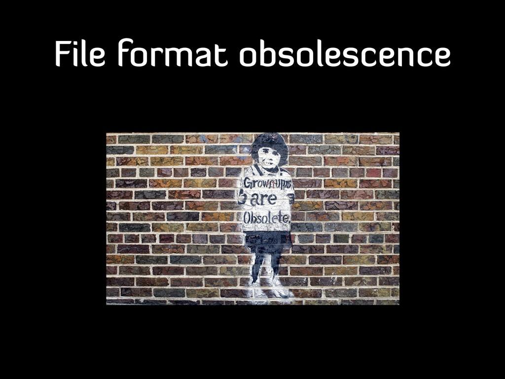 File format obsolescence