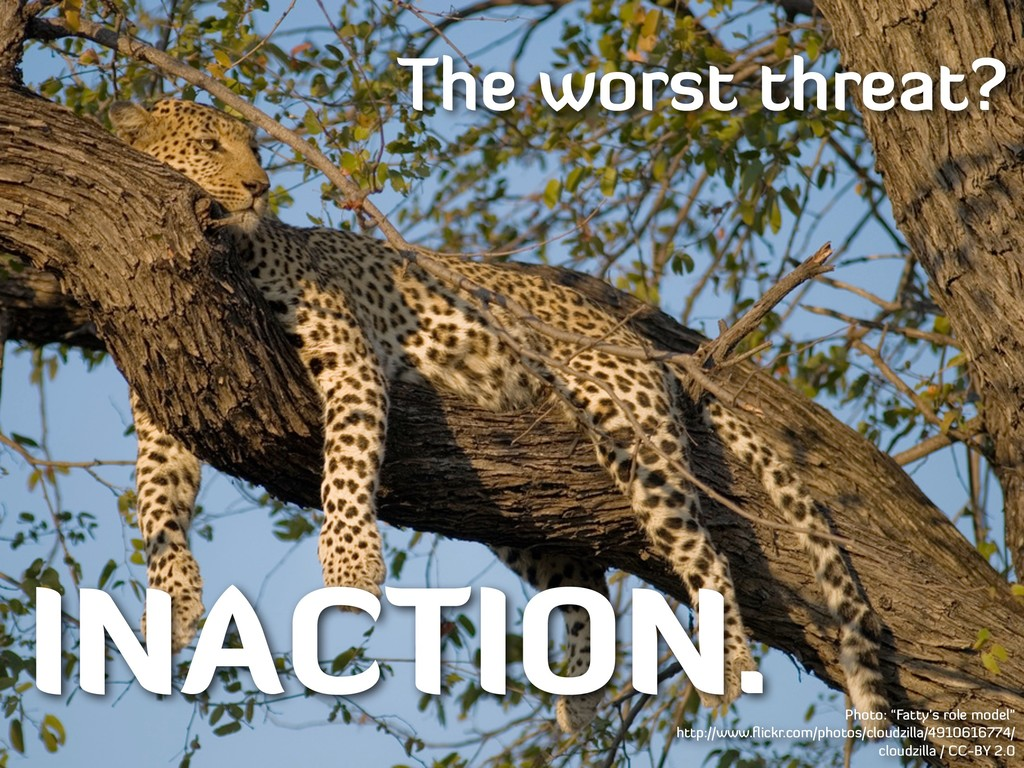 """The worst threat? INACTION. Photo: """"Fatty's rol..."""