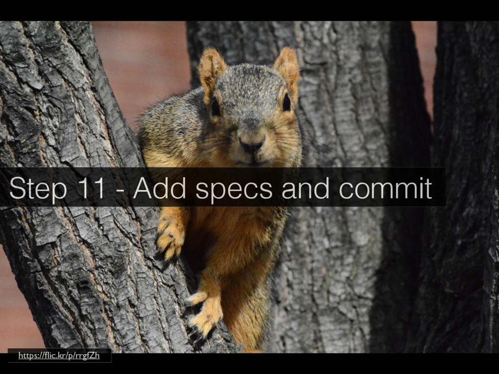 Step 11 - Add specs and commit https://flic.kr/p...