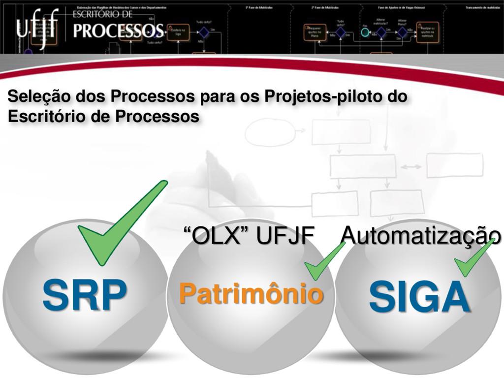 Seleção dos Processos para os Projetos-piloto d...