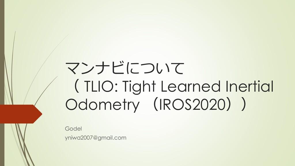 マンナビについて ( TLIO: Tight Learned Inertial Odometr...