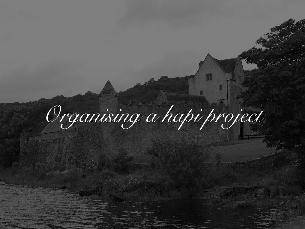 Organising a hapi project