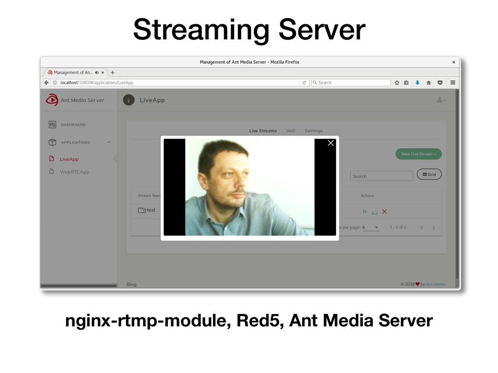 Streaming Server nginx-rtmp-module, Red5, Ant M...
