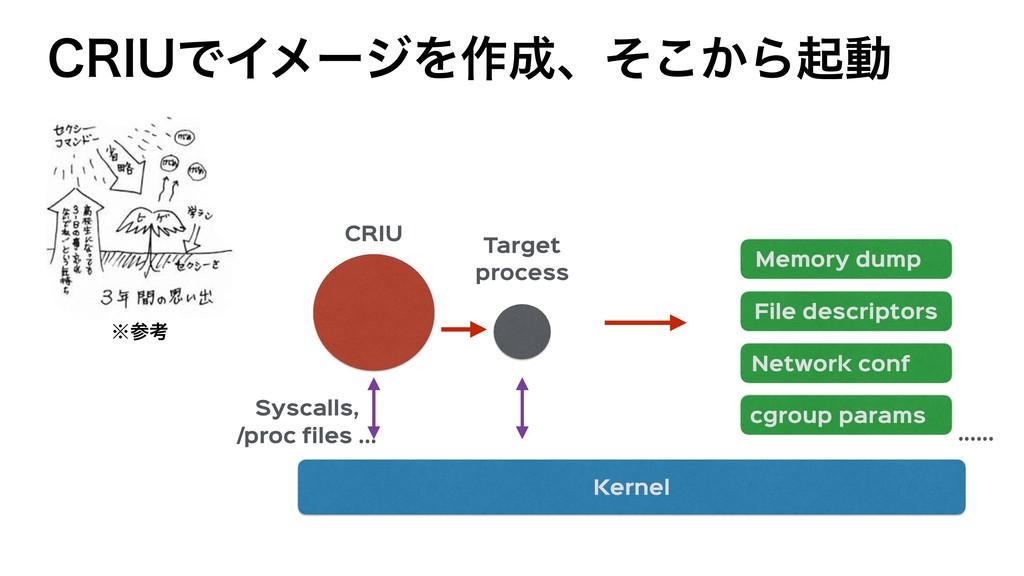 Memory dump Network conf File descriptors cgrou...