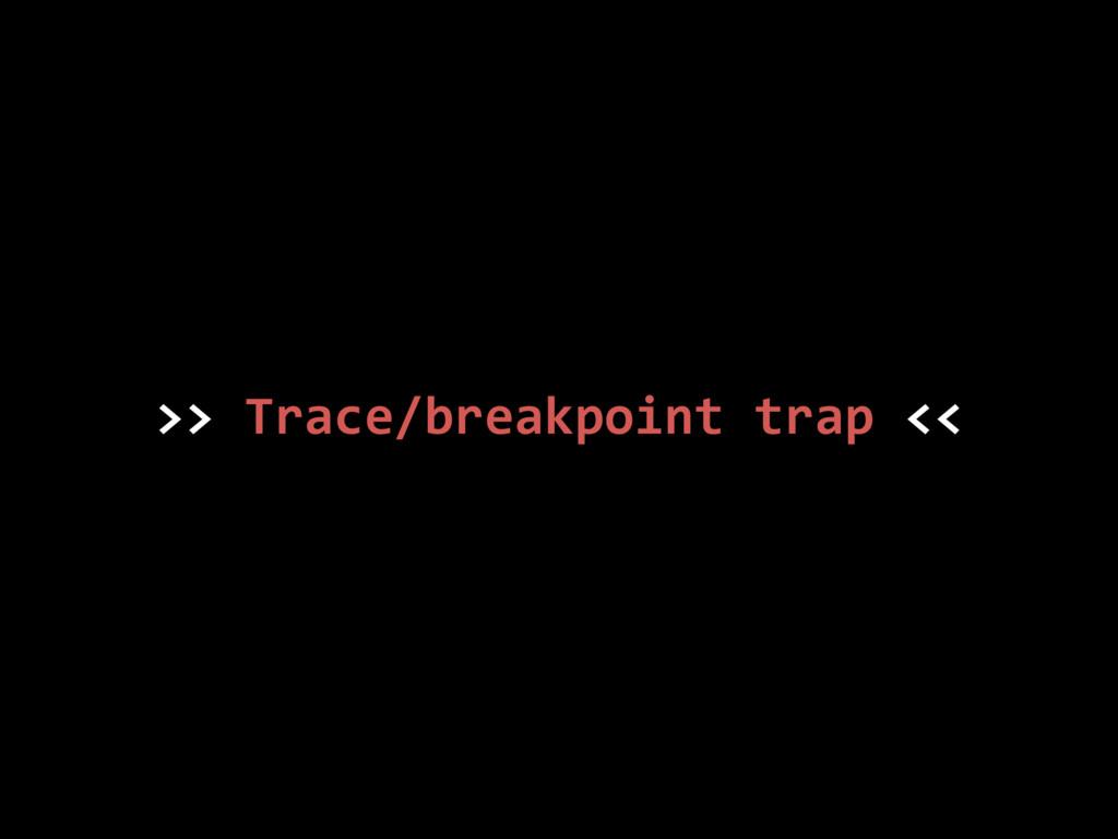 >> Trace/breakpoint trap <<