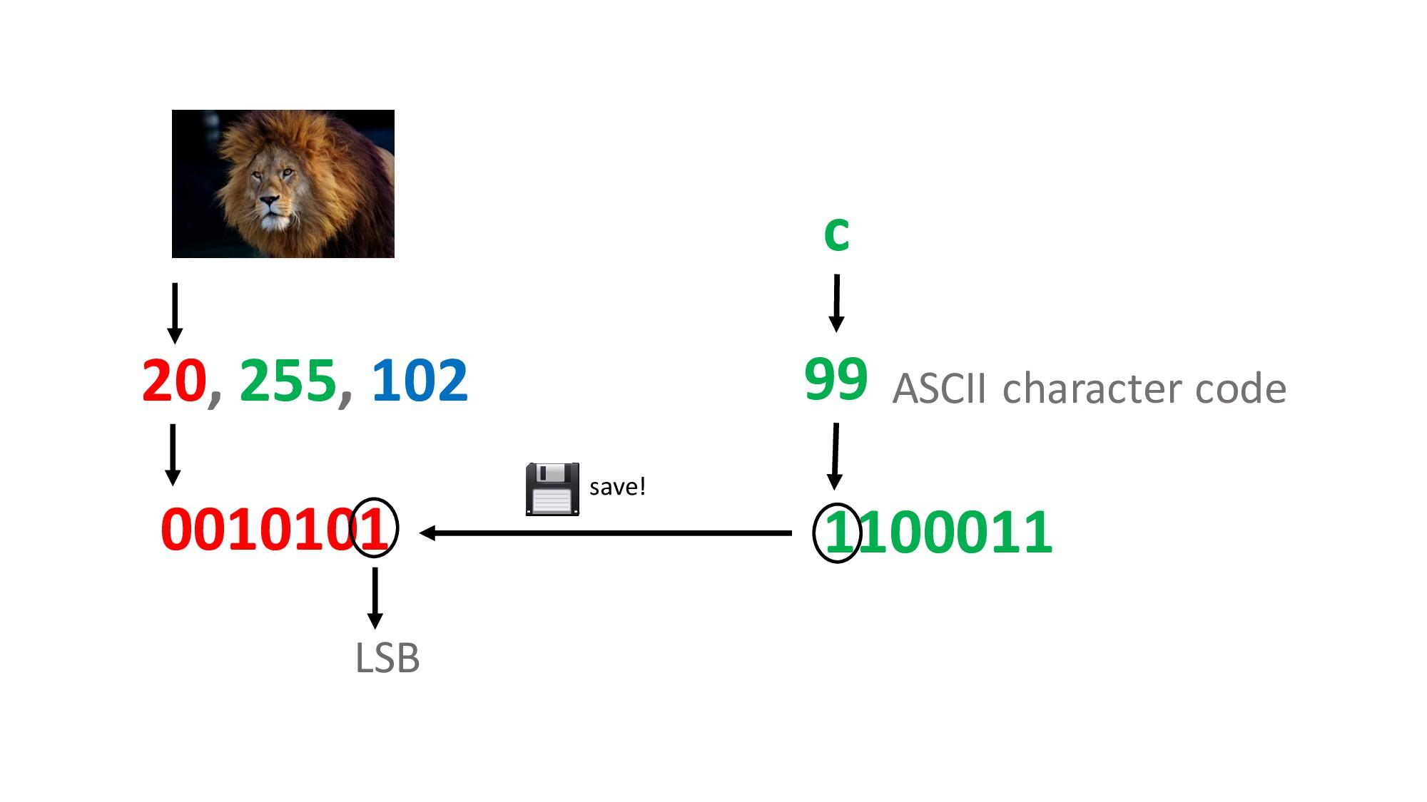 20, 255, 102 0010100 LSB c 99 1100011 ASCII cha...