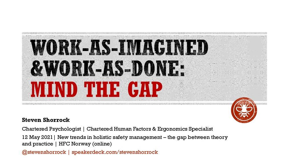MIND THE GAP Steven Shorrock Chartered Psycholo...