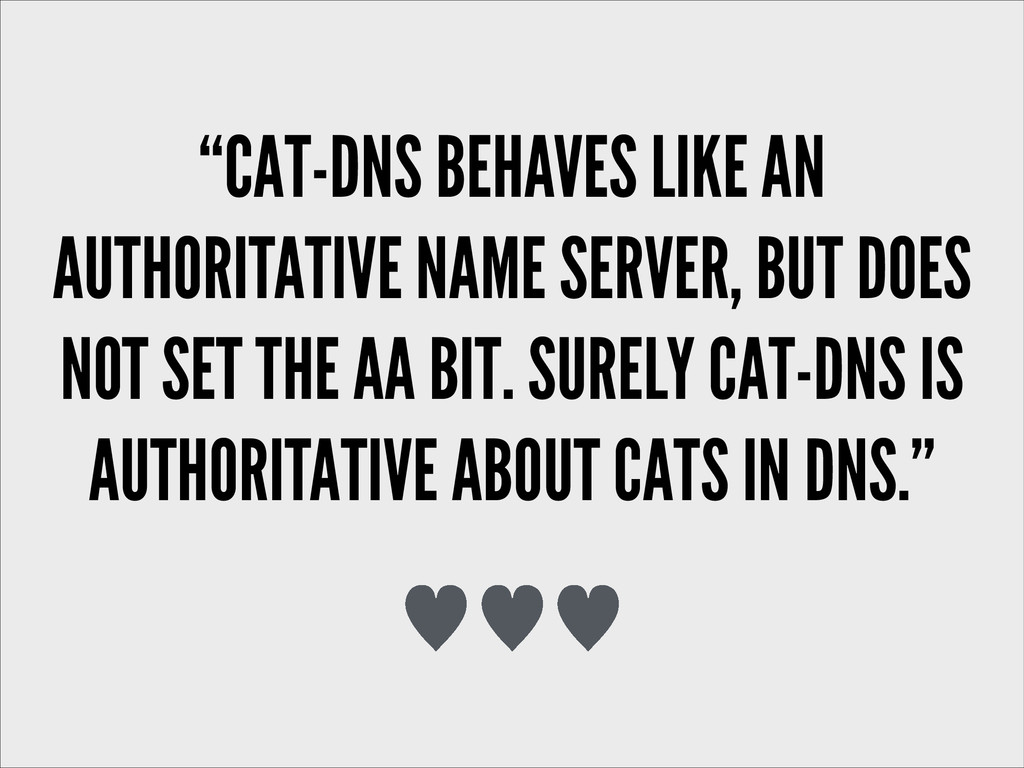 """CAT-DNS BEHAVES LIKE AN AUTHORITATIVE NAME SER..."