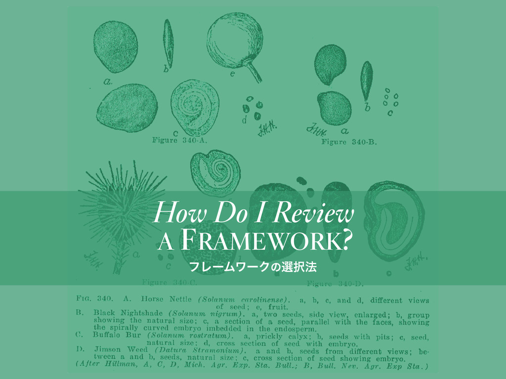 A FRAMEWORK? How Do I Review ϑϨʔϜϫʔΫͷબ๏