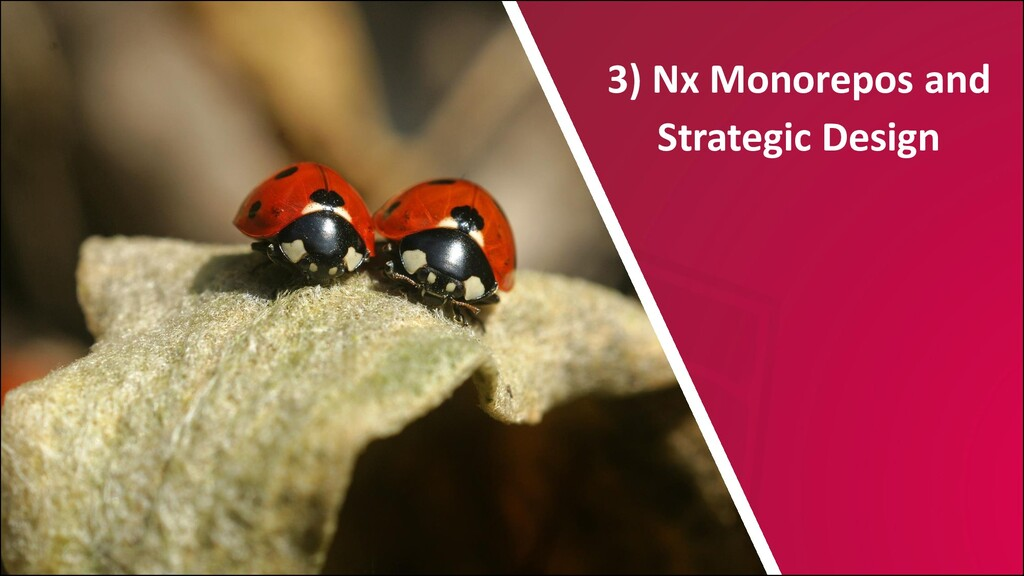 @ManfredSteyer 3) Nx Monorepos and Strategic De...
