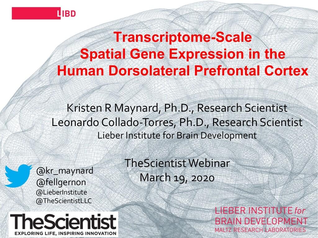 29 Transcriptome-Scale Spatial Gene Expression ...